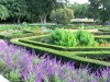 octagonal garden